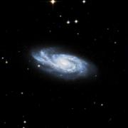 NGC 1004