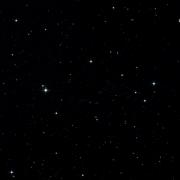 Mrk 1337