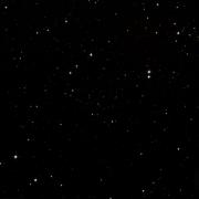 Mrk 1350