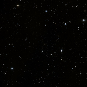 NSV 1125