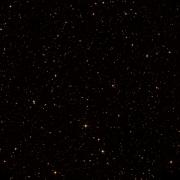 NSV 5319