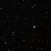 NSV 11703