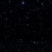HD 141556