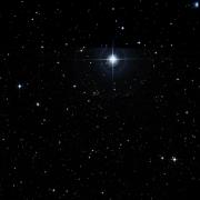 NSV 6238