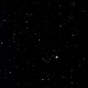 HD 219571