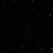 NSV 1264