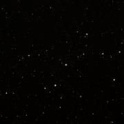 HIP 80975