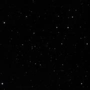 NSV 8605