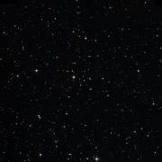 NSV 5165
