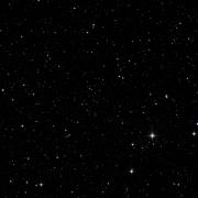 NSV 14495