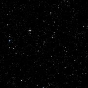 NSV 9163