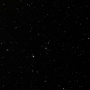 NSV 11641