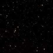 HIP 113561
