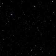 NSV 11819