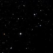 NSV 11372
