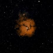 HIP 17717