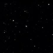 NSV 11504