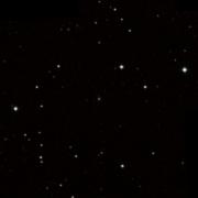 NSV 8606