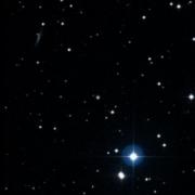 HD 32503