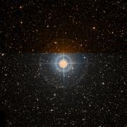 NSV 6899