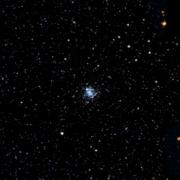 NGC 2207
