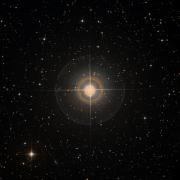 NSV 10205