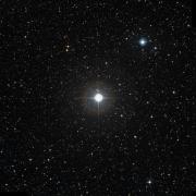 HIP 81728