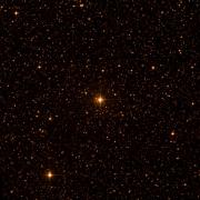 NSV 5038