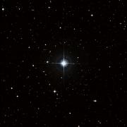 HD 81361