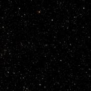 NGC 2501