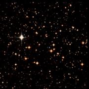 NGC 2503
