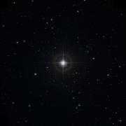 NSV 6153