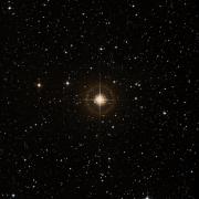 NSV 13350