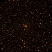 NSV 13614