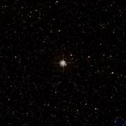 HIP 88981