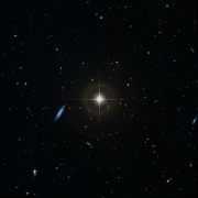 HIP 16516