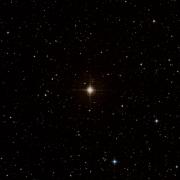 HIP 69481