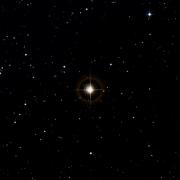 NSV 10543