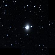 NGC 2981