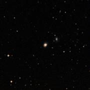 NGC 3184