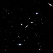NGC 5239