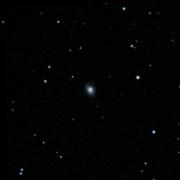 NGC 5529