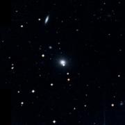 NGC 5567
