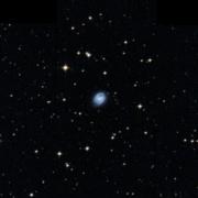 NGC 6331