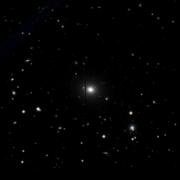 NGC 7005