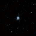 NGC 981