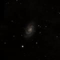 NGC 1016