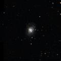 NGC 1041