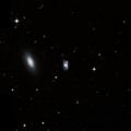 NGC 1133