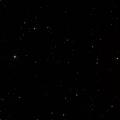 Arp 24